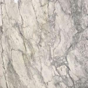 SUPER WHITE TOP